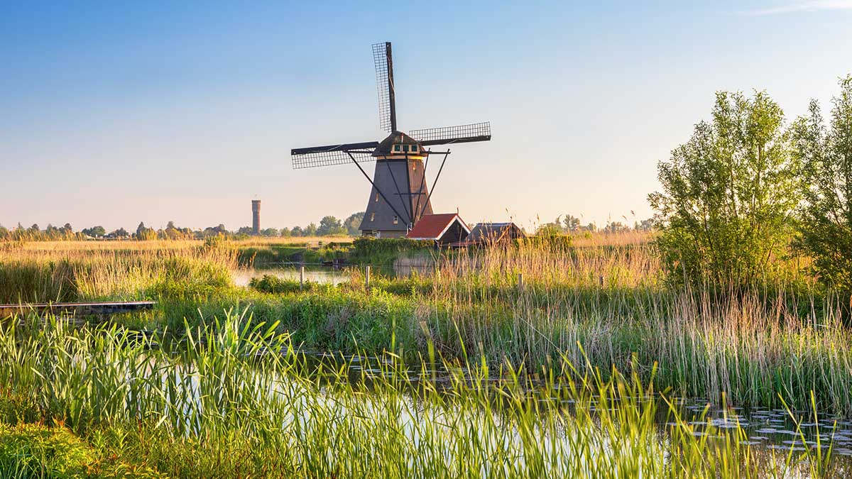 Coronavirus Travel Restrictions for the Netherlands