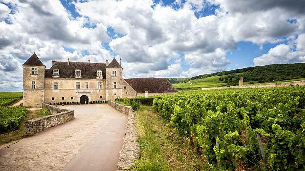 Chateau and vineyard in Burgundy