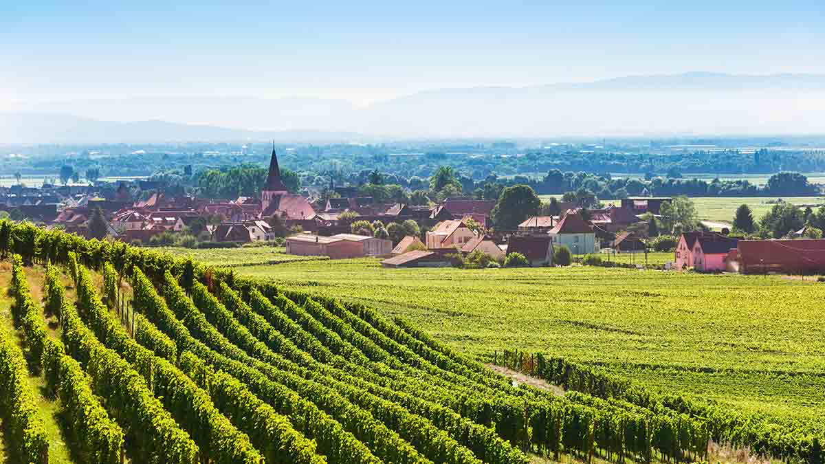Alsace region in Colmar, France