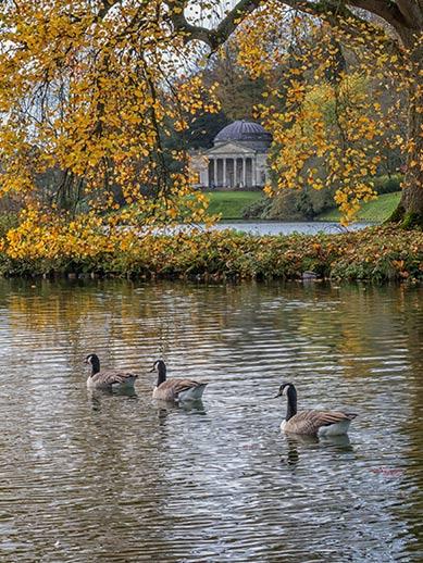 Stourhead Gardens in de herfst