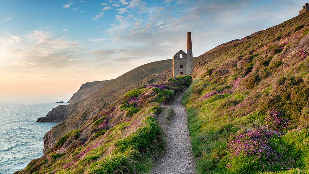 Summer evening on the South West Coast Path