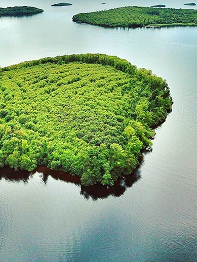 Lough Islands in Nordirland
