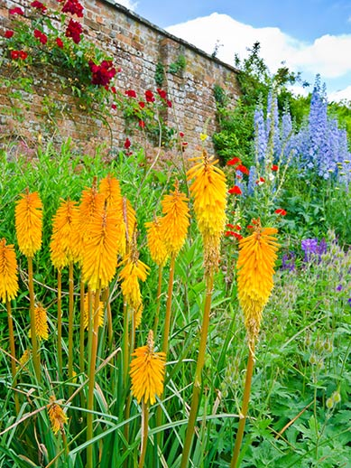Oxford Botanische tuinen