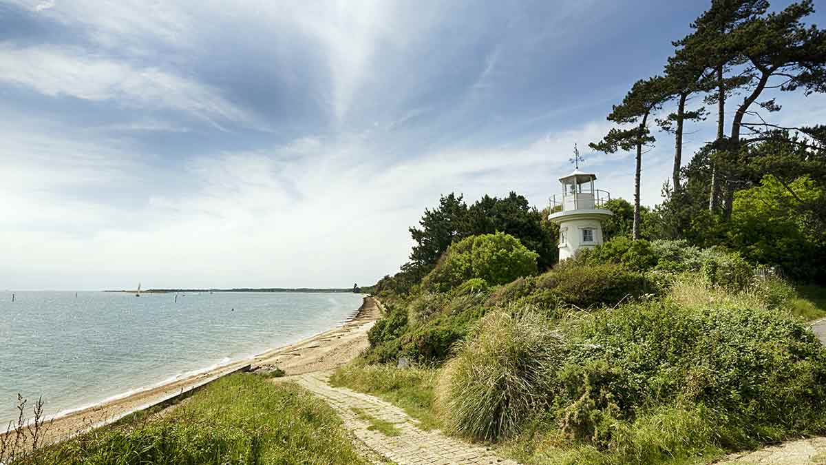 New Forest-Nationalpark in Hampshire
