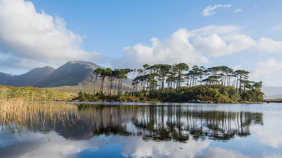 Connemara National Park Galway