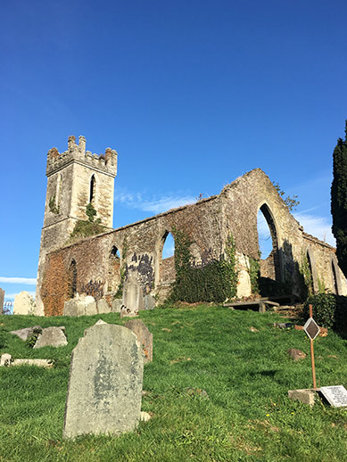 Castle ruins in County Wicklow