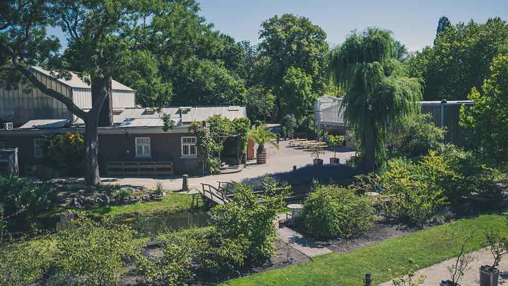 Botanical Gardens in Delft, Holland