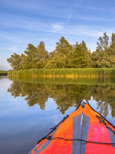 Biesbosch Nature Reserve in the Netherlands