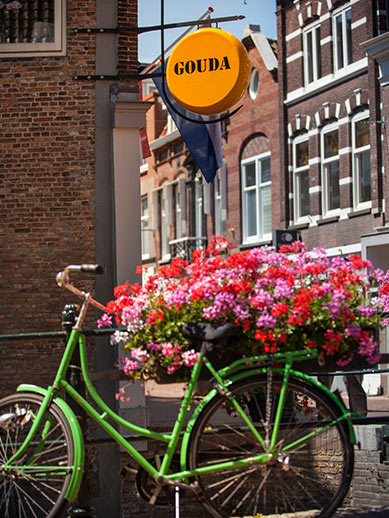 Explore Gouda in the Netherlands