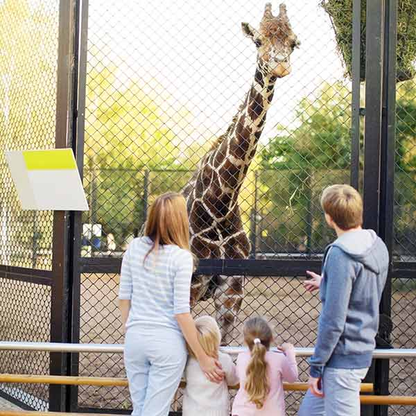Family having fun at a zoo in the Netherlands