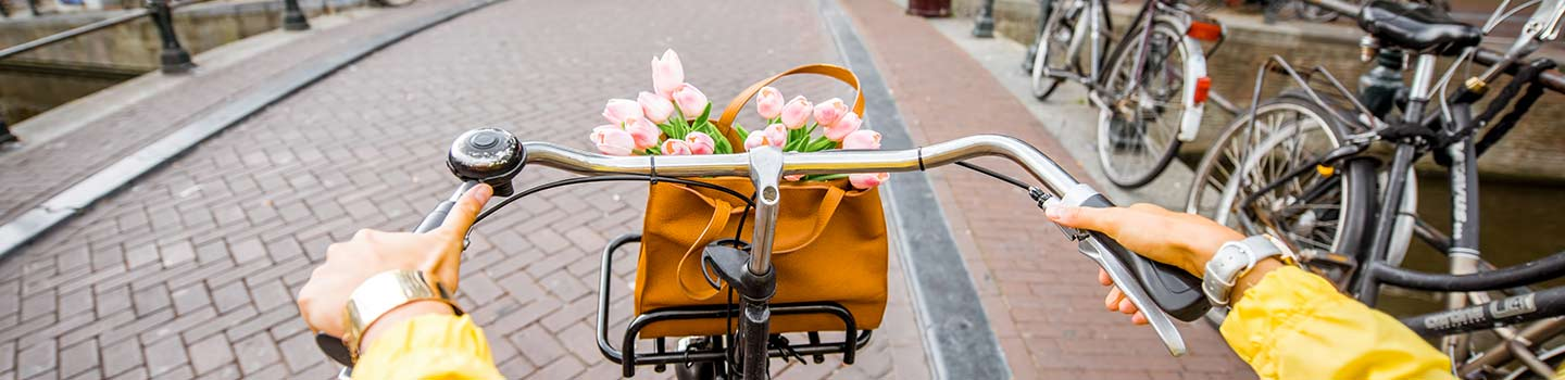 Give cycling a go during your Amsterdam Mini Cruise.