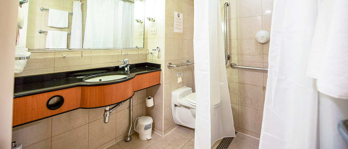 Photo of Accessible en-suite bathroom in a cabin on Hull to Rotterdam P&O Ferry