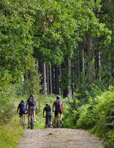 Cycling holiday in Belgium post-coronavirus