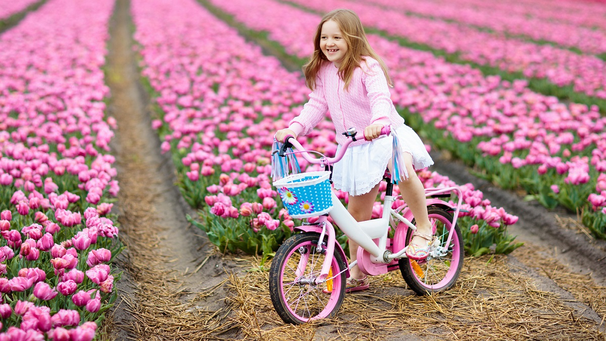 Taking a bike to Holland - tulip fields